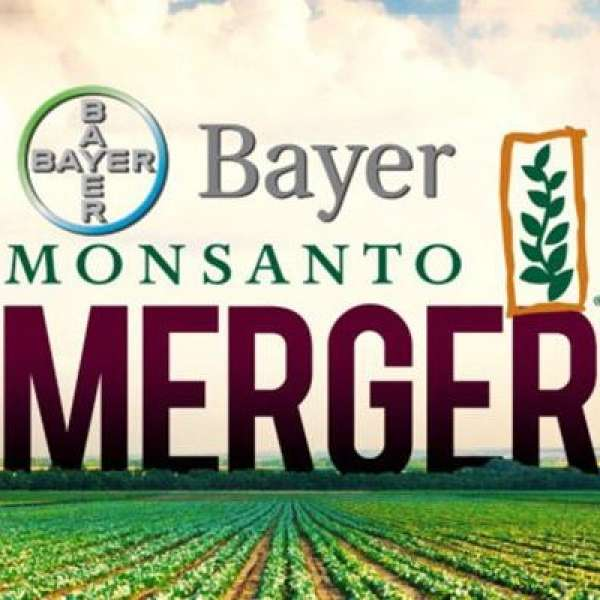 Bayer cherche à engloutir Monsanto, pour le meilleur ou pour le pire ?