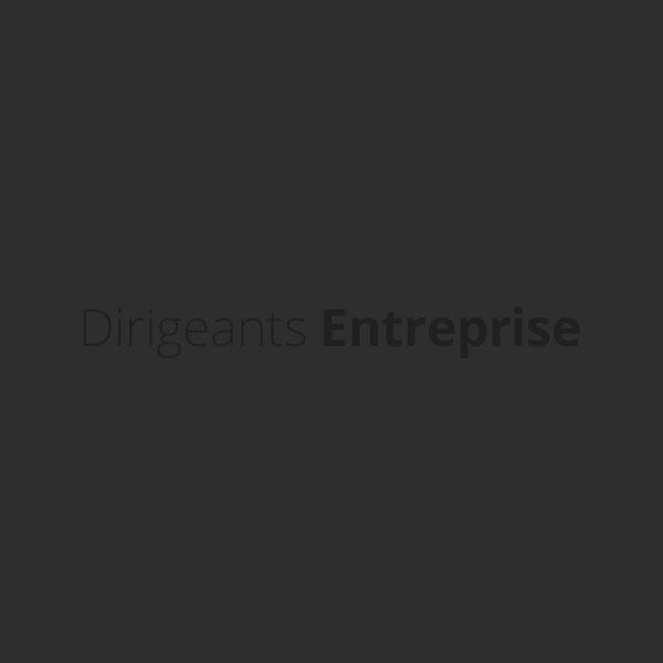 Dirigeants Entreprises, le site de ceux qui dirigent nos entreprises