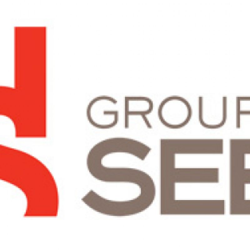 logo SEB grands dirigeants